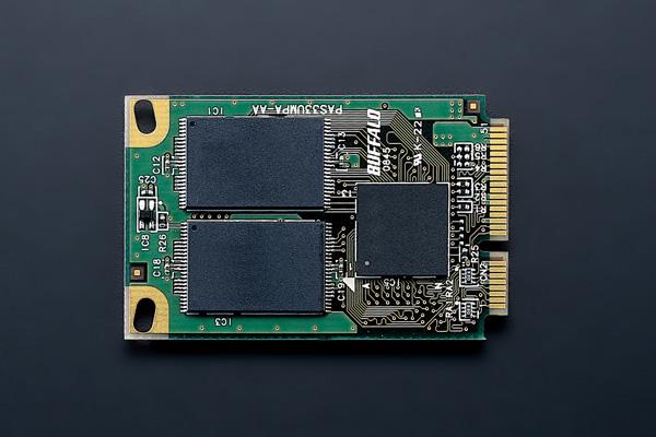 Buffalo SSD Dell Inspiron Mini 9